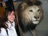 natural-museum-leon