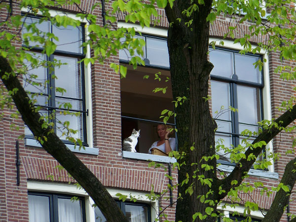 hetaira sinonimos prostitutas barrio rojo amsterdam