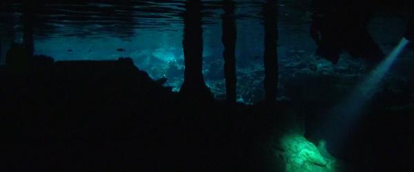 cenotes-rivieramaya