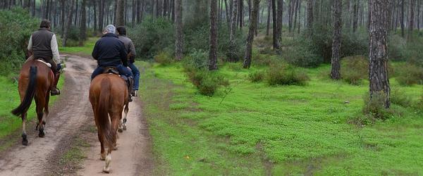 ruta-caballo-donana